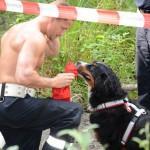 Wiener Feuerwehrkalender mit Hund